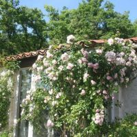 House for sale in France - 12.jpg