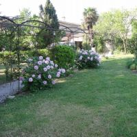 House for sale in France - 8. tuin.jpg