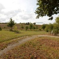 House for sale in France - 82730VIEW.jpg
